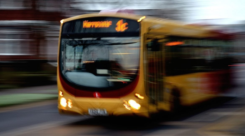 Servicio de transporte escolar | GESYLIC